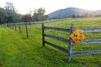 Virginia_Countryside